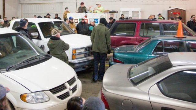 car auction live