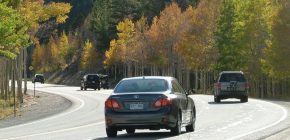 How To Insure Salvaged Cars Bought at Auction in Colorado?