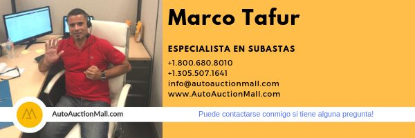 Marco Tafur Auction Specialist